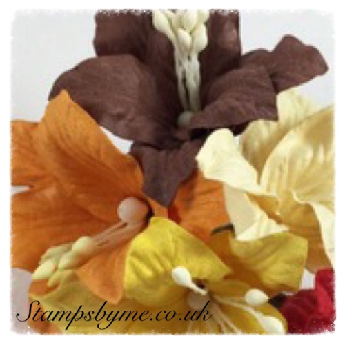 PAPER LILY FLOWERS - MIXED EARTH TONE - 230715b