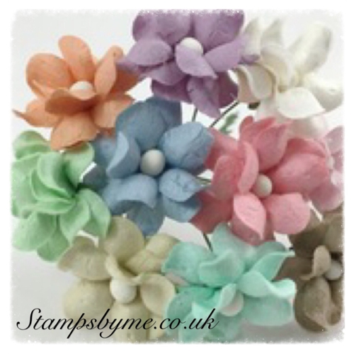 SWEETHEART BLOSSOM PAPER FLOWERS - PASTEL COLLECTION - 230715f