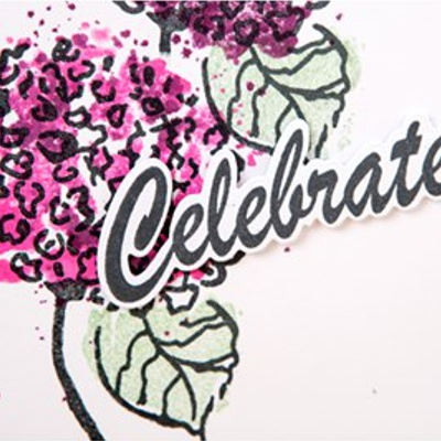DIE - CELEBRATE outline - 050316b