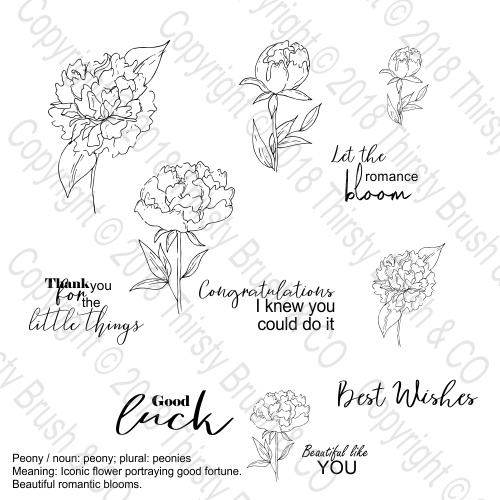 THIRSTY BRUSH & CO - ROMANTIC BLOOMS A5 STAMP SET