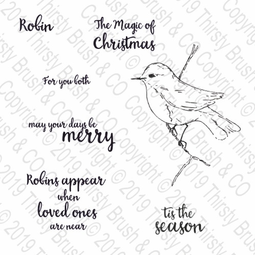 THIRSTY BRUSH & CO - MERRY ROBIN A5 STAMP SET 120719d - FBL