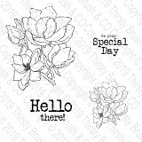 THIRSTY BRUSH & CO - SPECIAL DAY - A5 STAMP SET