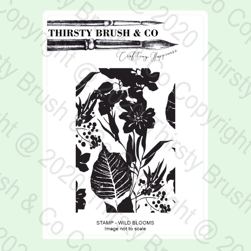 570873 TV - THIRSTY BRUSH & CO - A5 STAMP - WILD BLOOMS - 140820b - SHOW - FBL