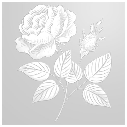 859817 - TV - SIGNATURE EMBOSSING FOLDER - BUDDING ROSES - SHOW - FBL