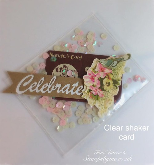 CELEBRATE stamp and CLEAR SHAKER CARD